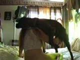 houswife with her dog