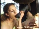 2 girls lick horse balls