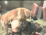 German Dog Fuck pt 3