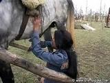 hungarian girl suck a horse cock